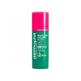 DERMOPHIL INDIEN Réparation forte lèvres 4g