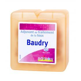 BOIRON Baudry pâtes à sucer 70g