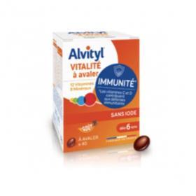 ALVITYL Vitalité 90 comprimés à avaler