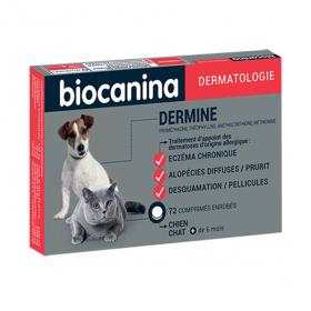 Dermine 72 comprimés