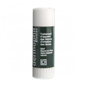 DERMOPHIL INDIEN Stick lèvres application cutanée 3,5g