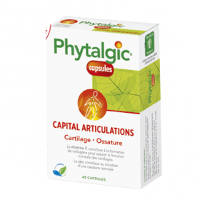 PHYTHEA Phytalgic capital articulations 45 capsules