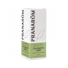 PRANAROM Huile essentielle eucalyptus radié 10ml
